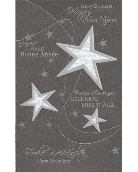 weihnachtskarte_sternsch6002